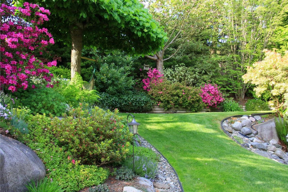 Yard with beautiful landscape work