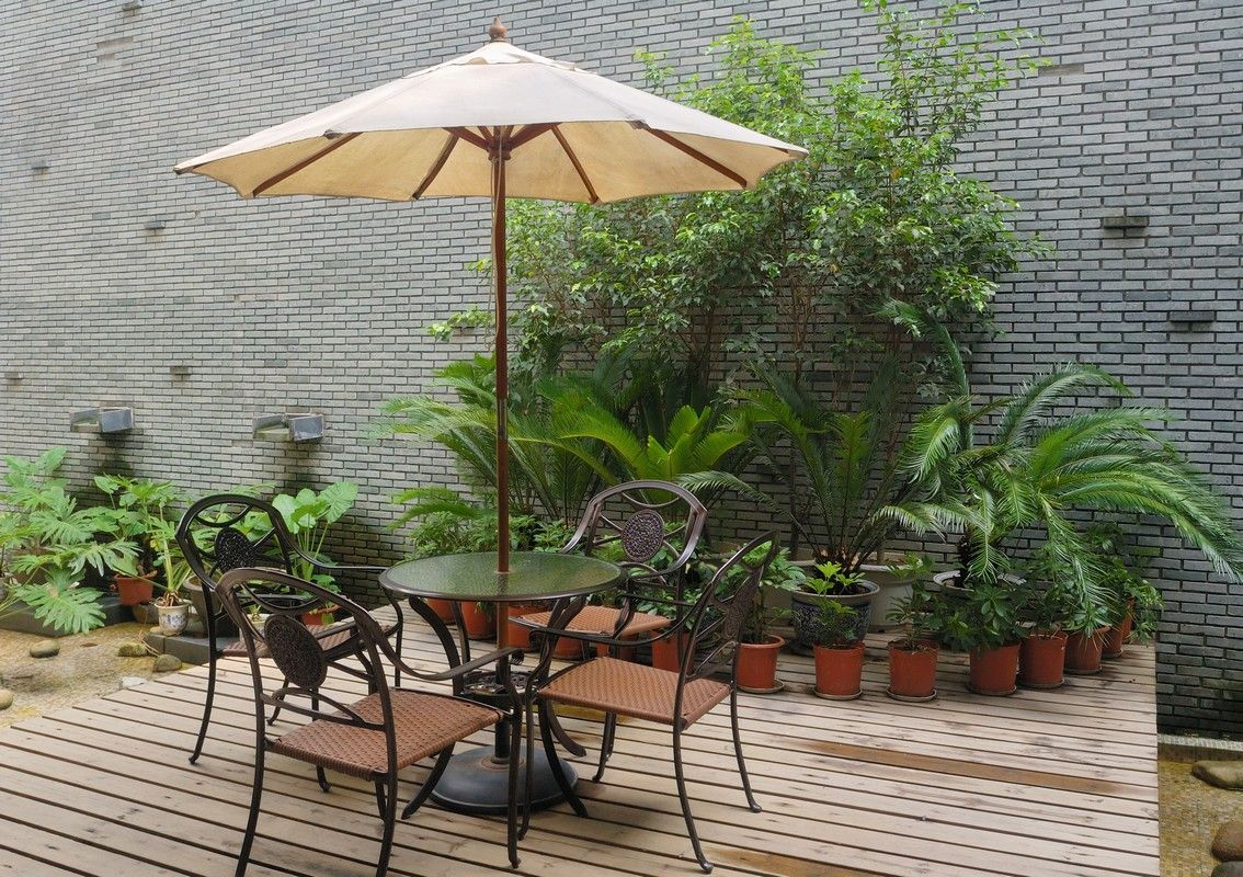 Deck with ferns to host summer guests