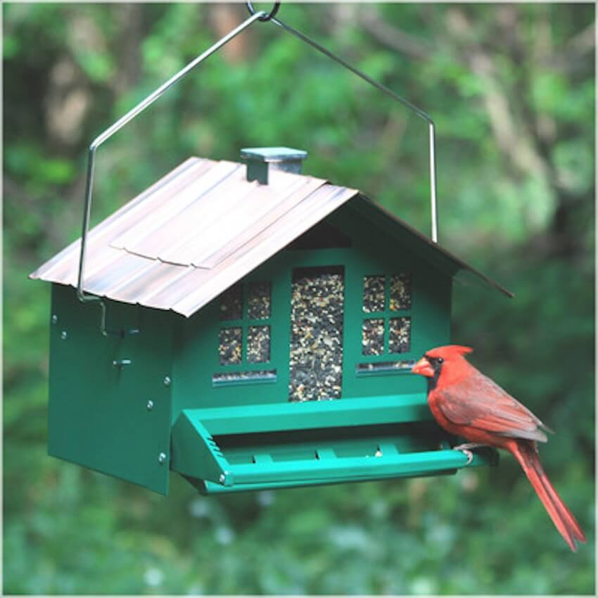 Bird feeder for any home exterior