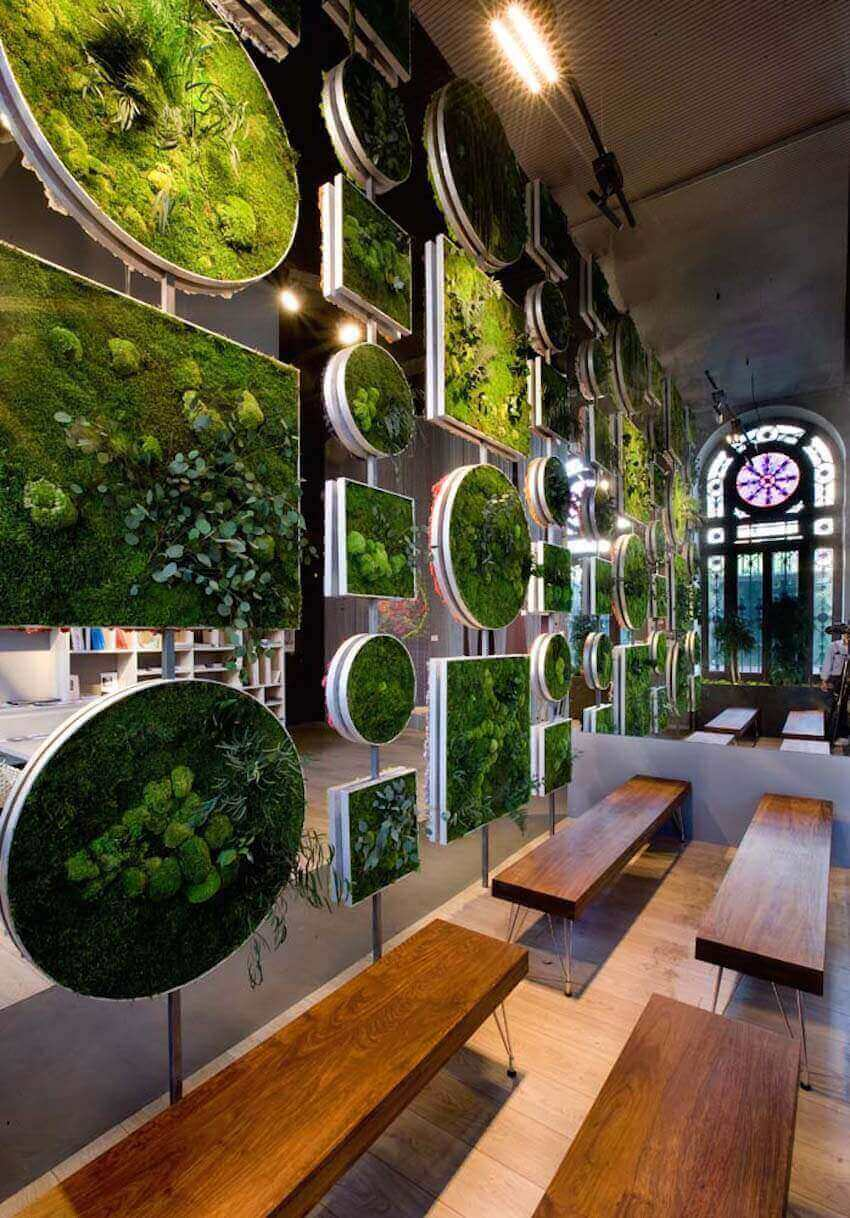 Moss divider for a home interior