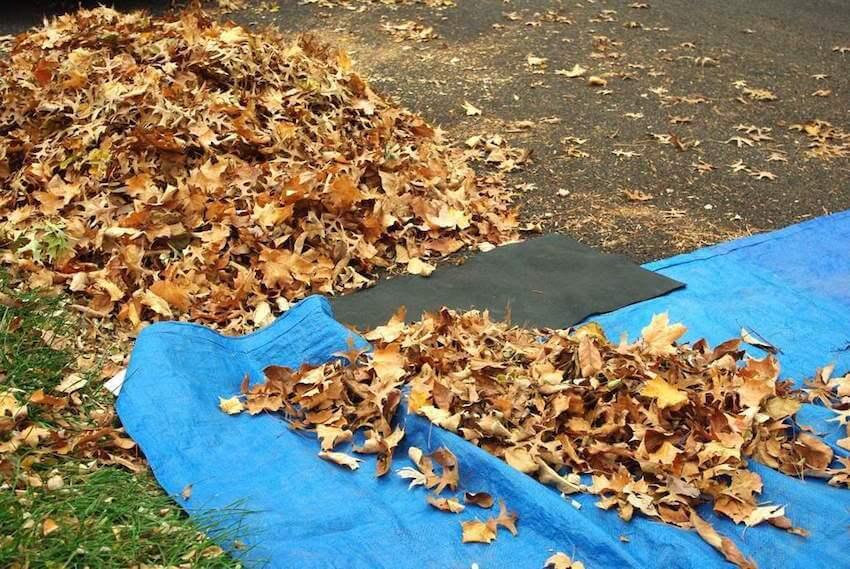 Time saving moments using tarp scooping movements