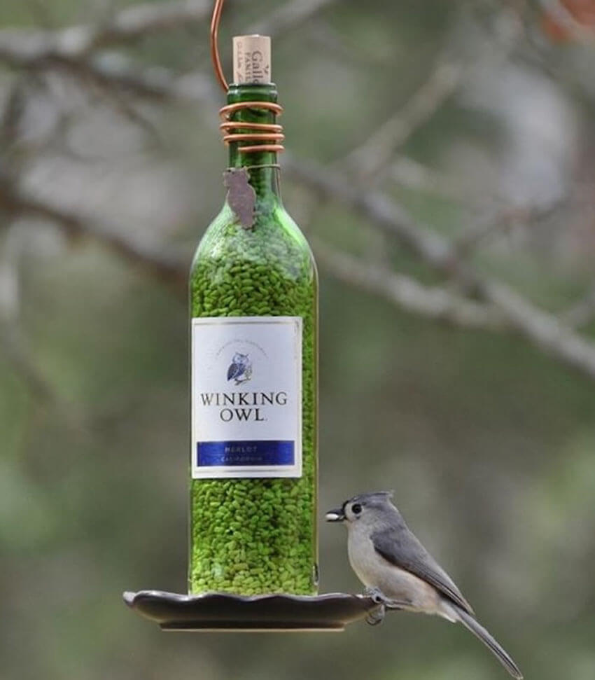 Bird feeding bottles for your backyard