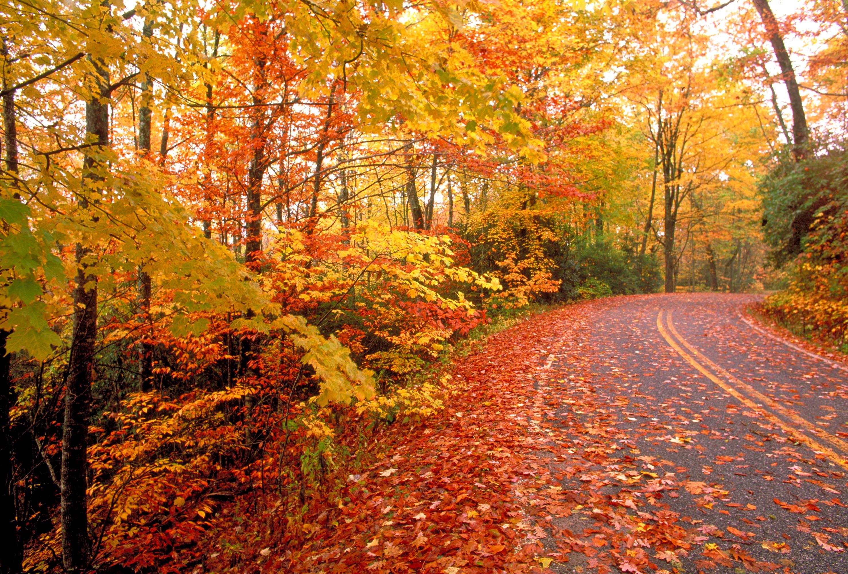 Fall Insulation Checklist