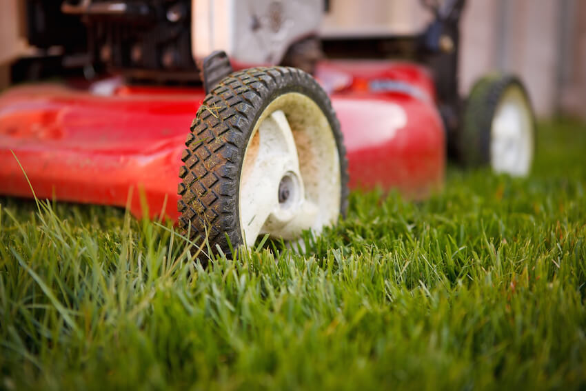 Landscaping and lawn care for your home's exterior yard