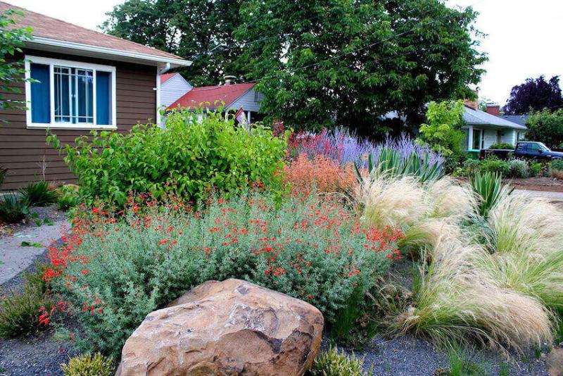 Home landscaping that can make a difference