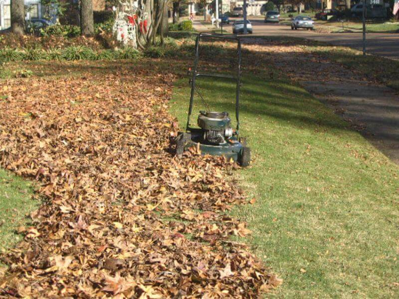 DIY Landscaping: Mowing fallen leaves is easier than raking and provides your lawn with nutrient-rich leaf mulch.
