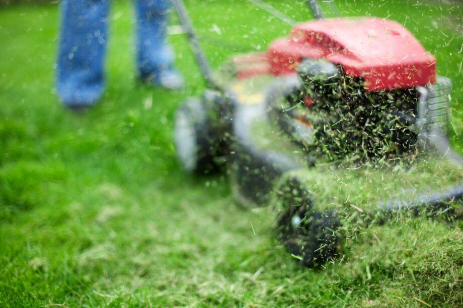 Lawn care shows dad that you care