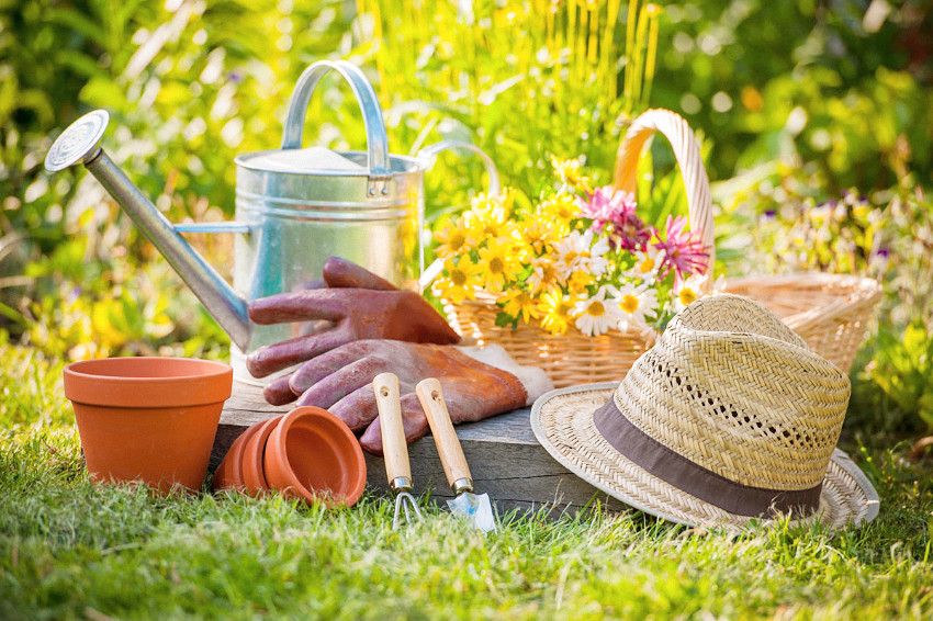 Gardening is one of the most pleasurable and rewarding activities you can indulge in.