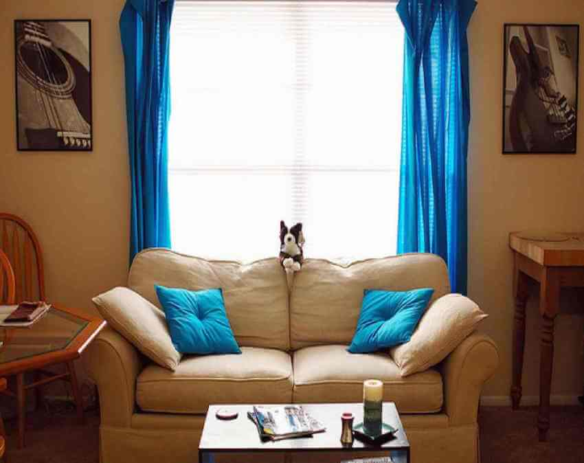 Neon blue or teal throw pillows on your upholstery