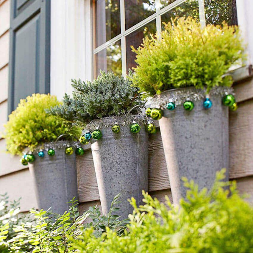 Cylindrical planters that host healthy plants
