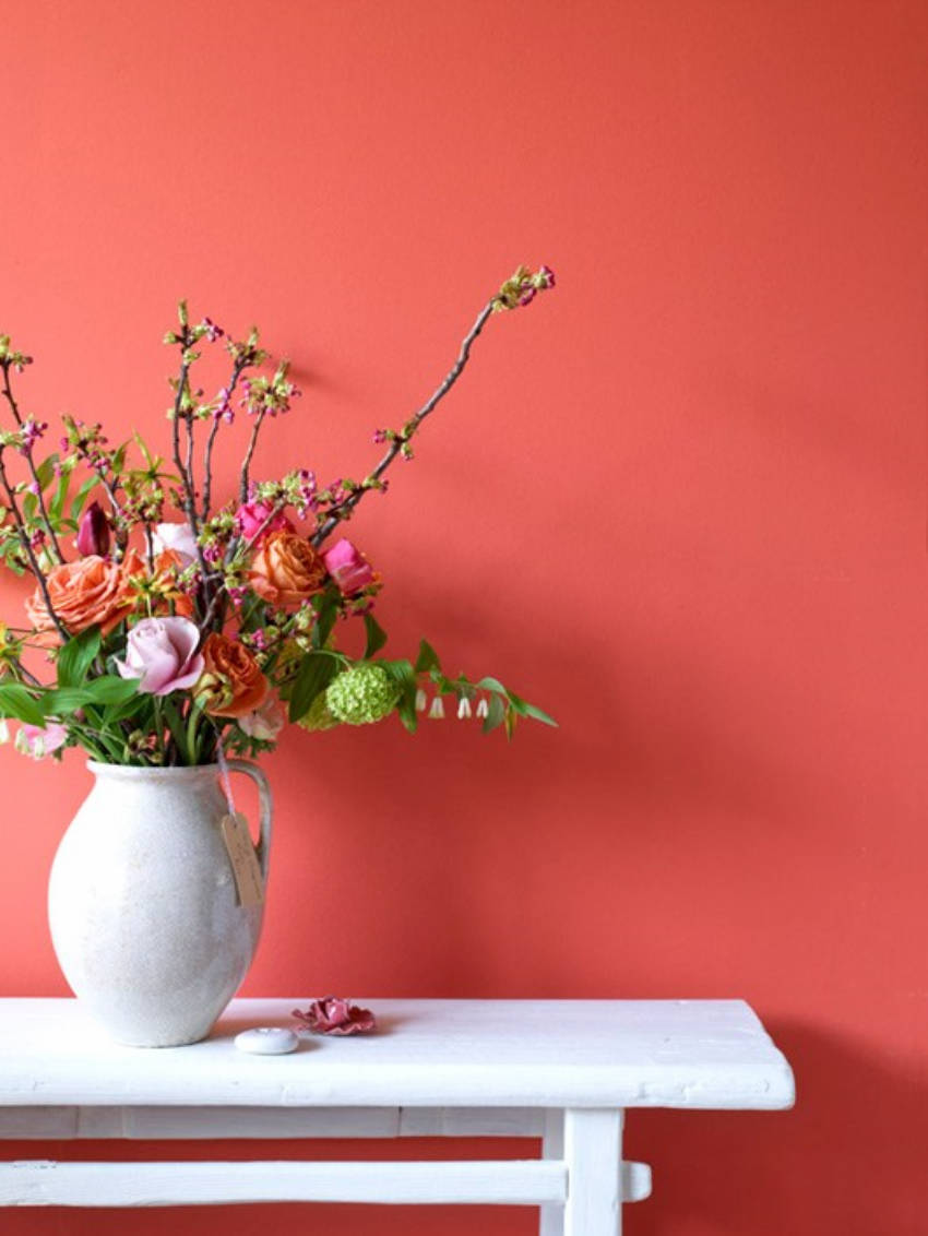 Coral pink is the perfect balance between bold and easy on the eyes.