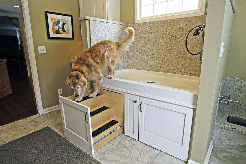 Staircase for your dog! Railings that help your pooch get around