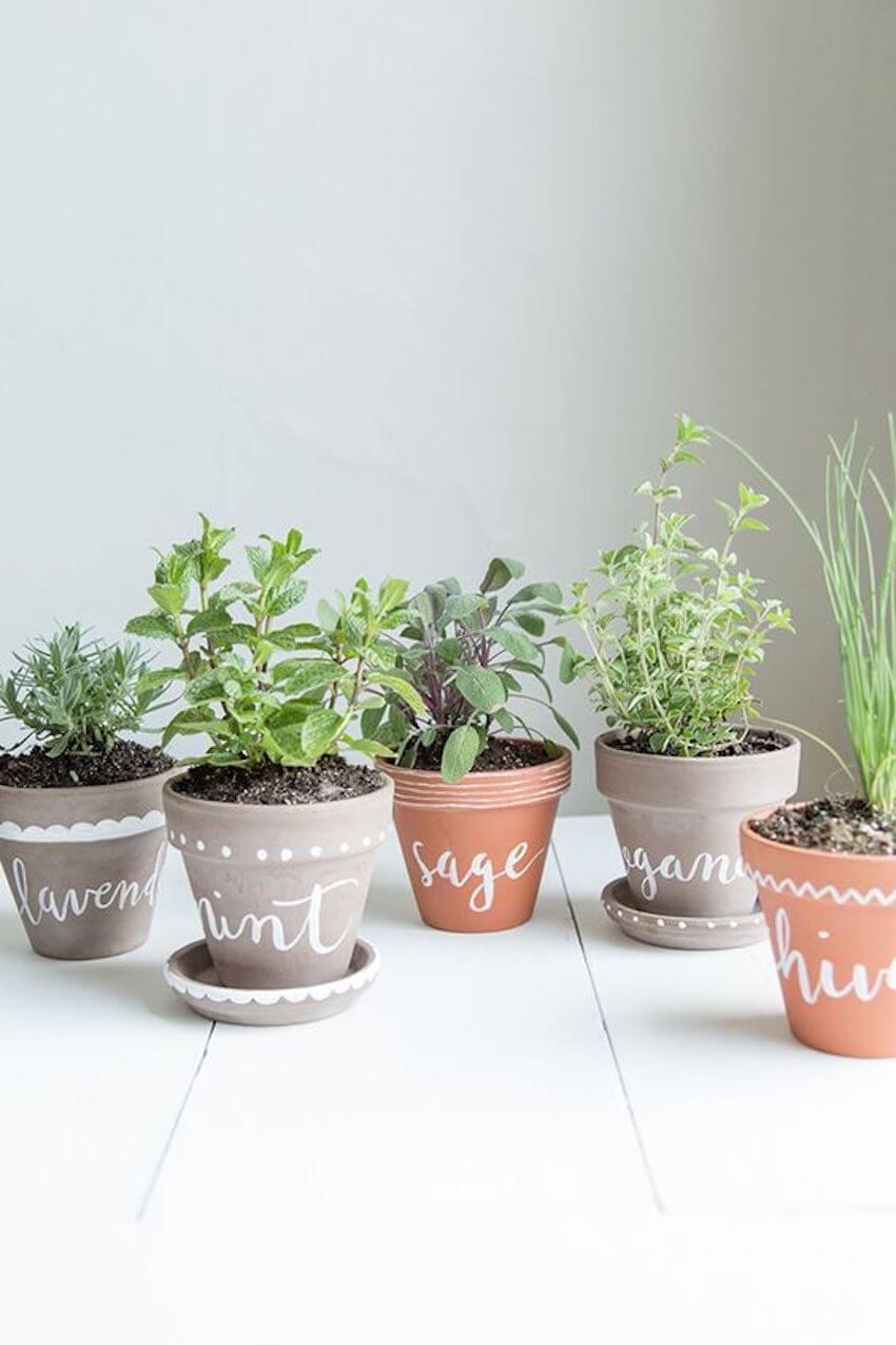 Indoor painted labeled herb garden