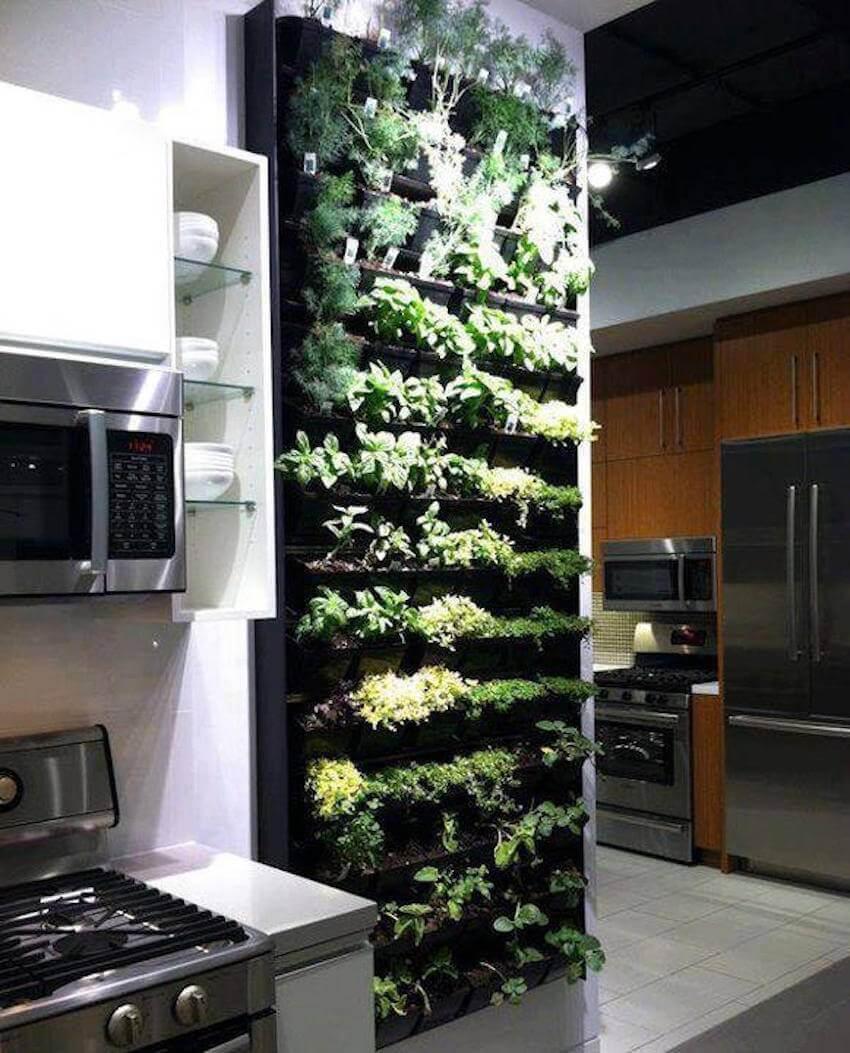 Kitchen sense: vertical indoor herb garden