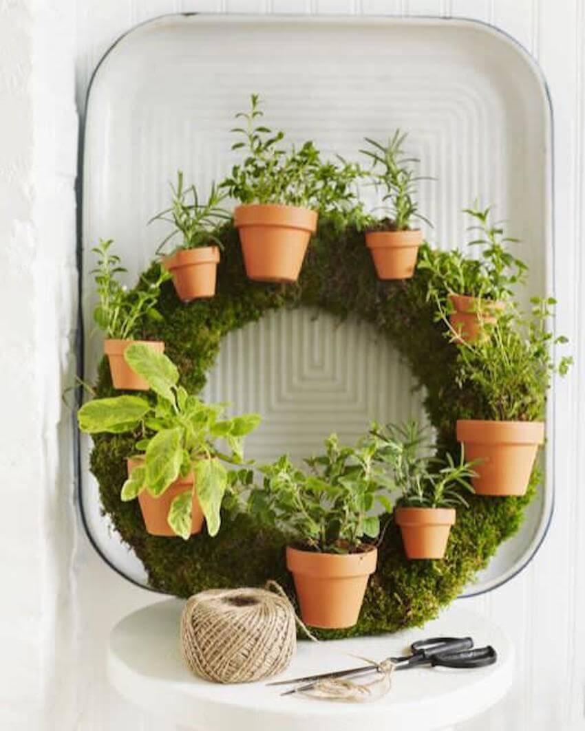 Indoor wreath herb garden