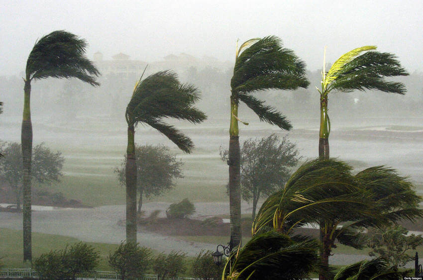 Wind resistant hurricane impact windows can keep your home safe