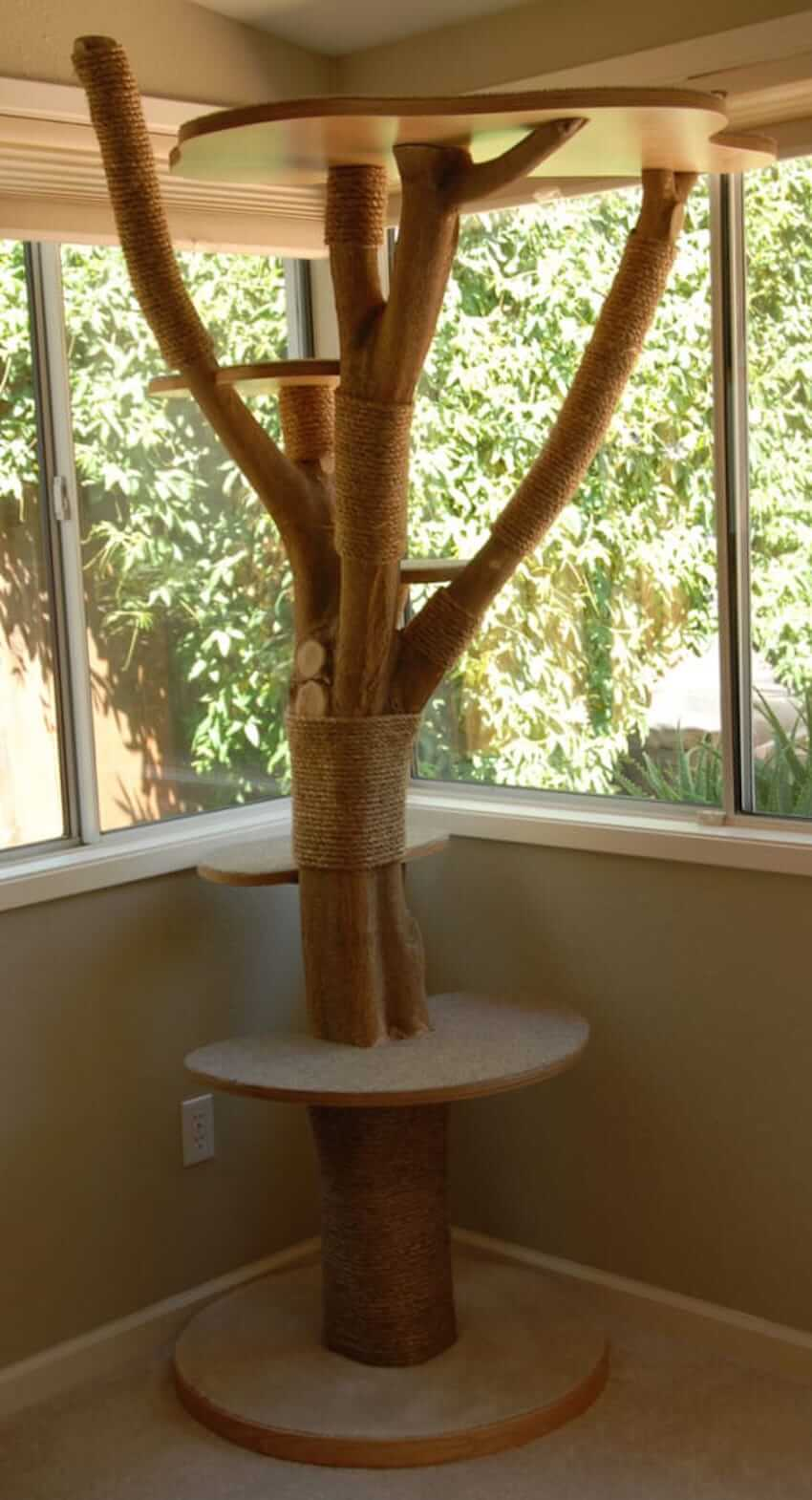 Pet cat perch for your home interior