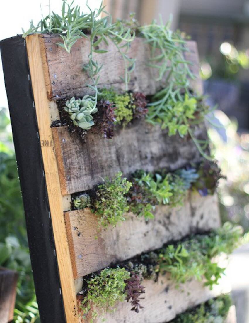 DIY outdoor pallet garden: landscaping isn't just for your lawn!