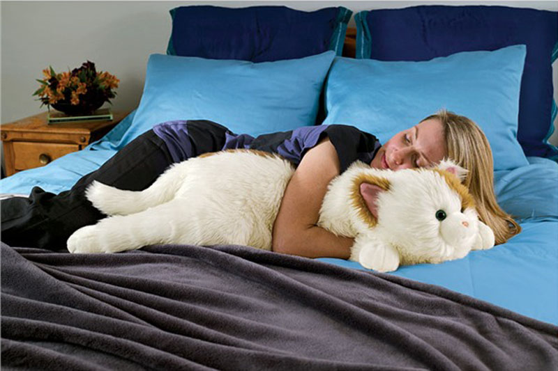 Get snuggly with this cat body pillow.