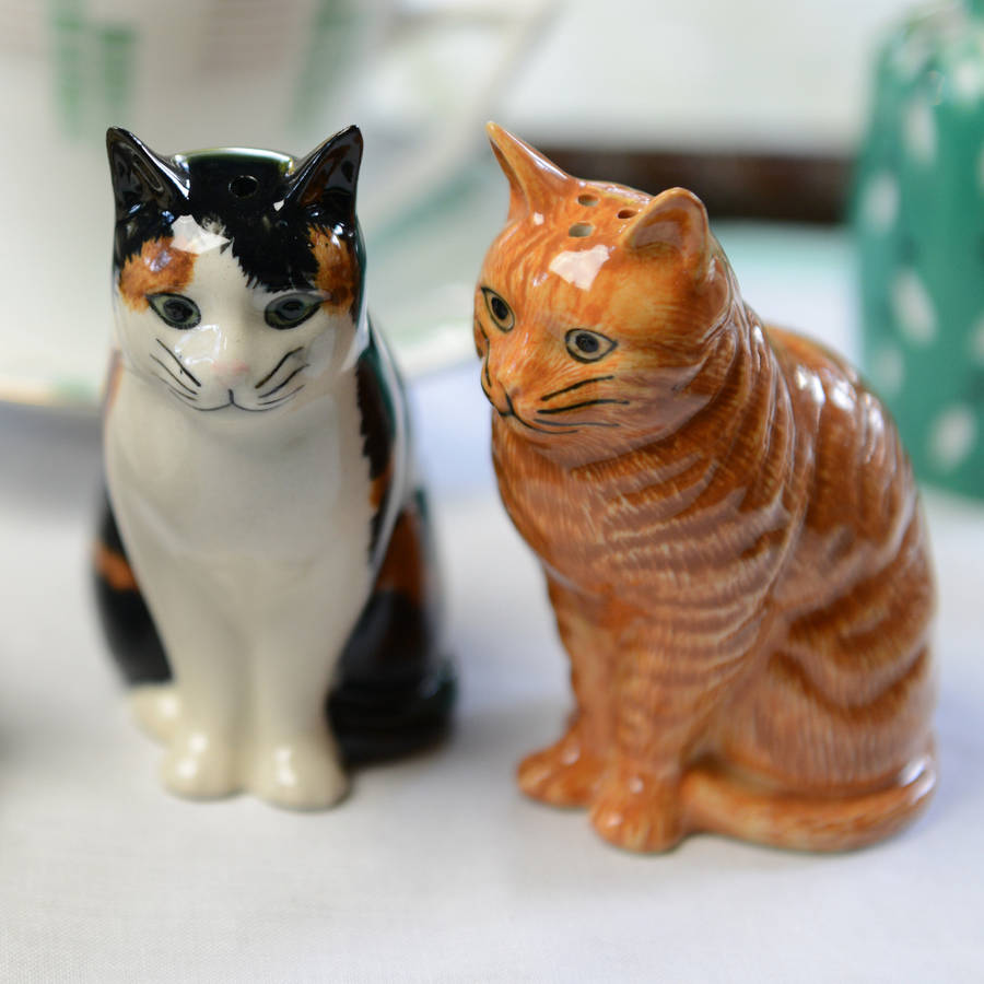 Cat salt and pepper shakers can spice up your kitchen!