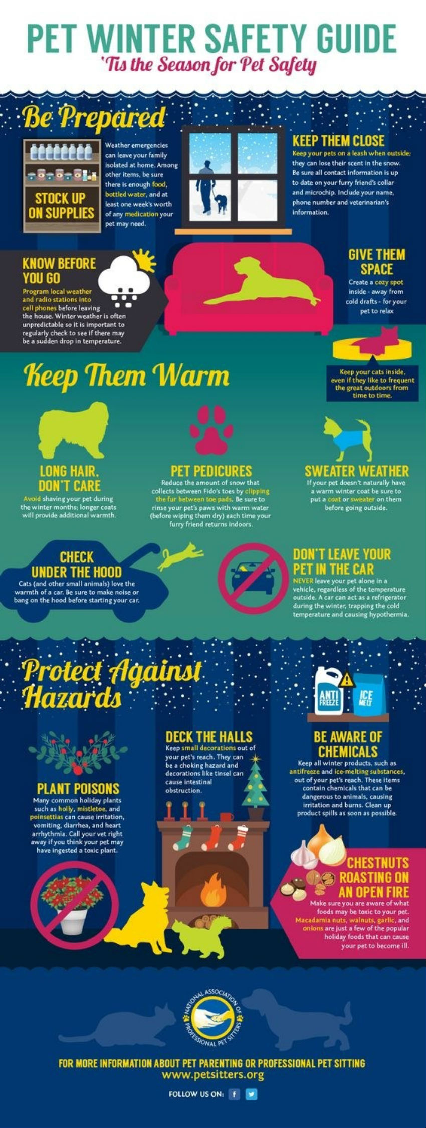 This is pet safety season! Image Source: Pinterest