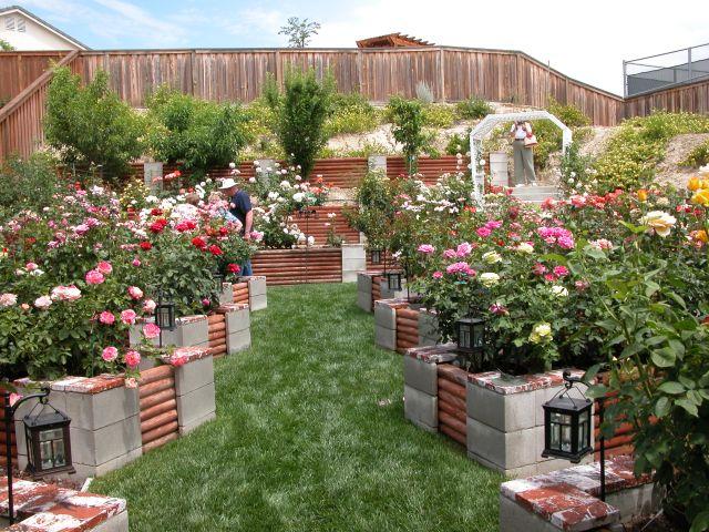 raised-cinder-block-garden-bed