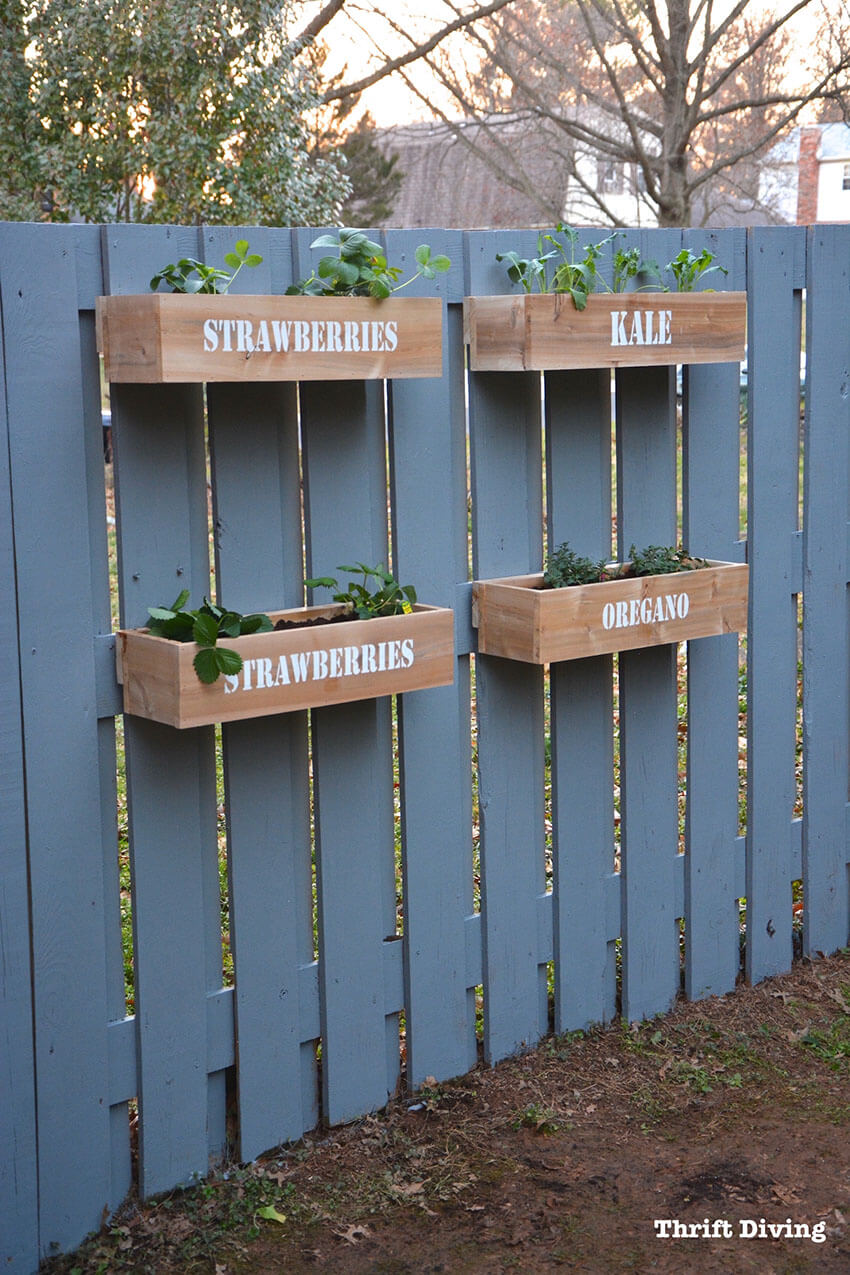 Perfect for those who want to start a small garden.