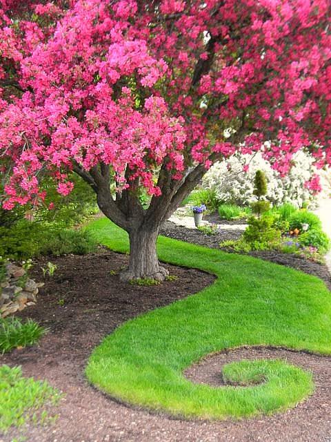 sod swirl spiral in whimsical garden