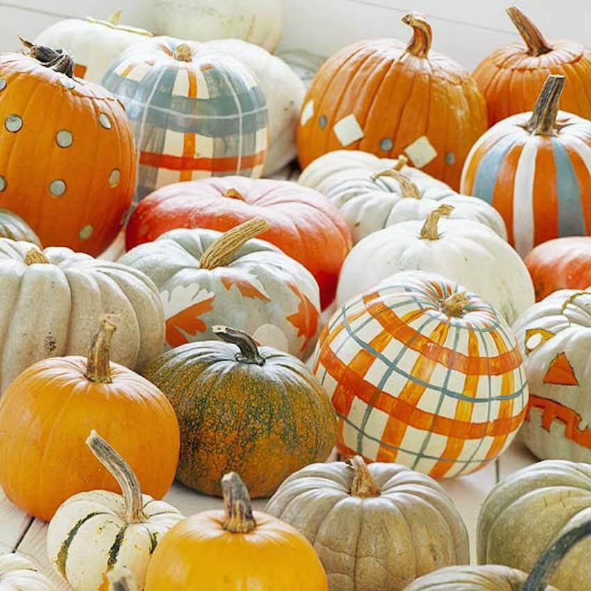 Pumpkins, pumpkins everywhere, and all of them for decor