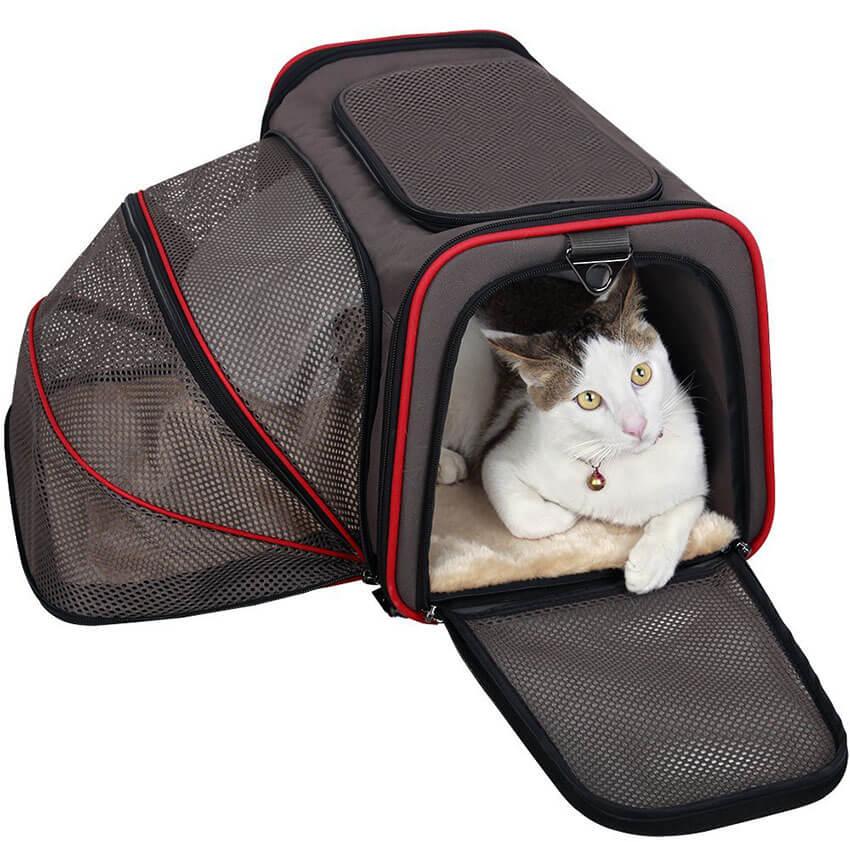 Expandable Travel Pet Carrier