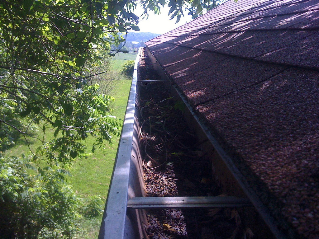 Smart Gutter Cleaning Steps to Save You Money