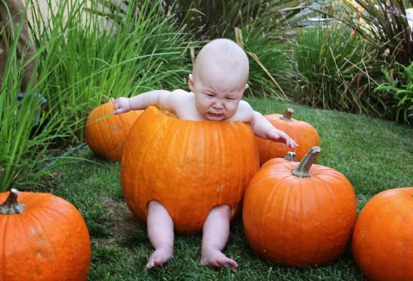 Dressing up your baby for Halloween may seem like an Instagram-worthy idea, but the reality is usually has a lot more tears.