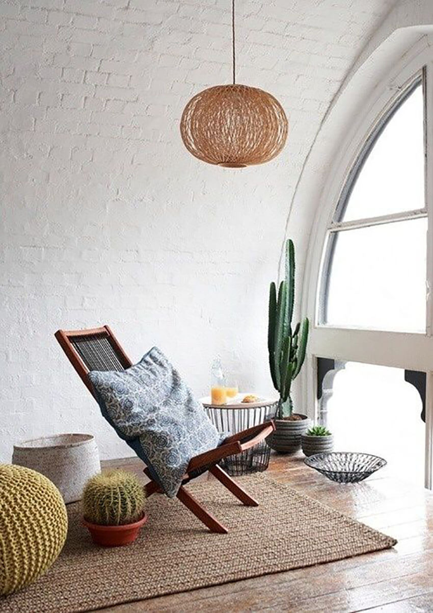 A cactus is perfect for decorating a beautiful living room.
