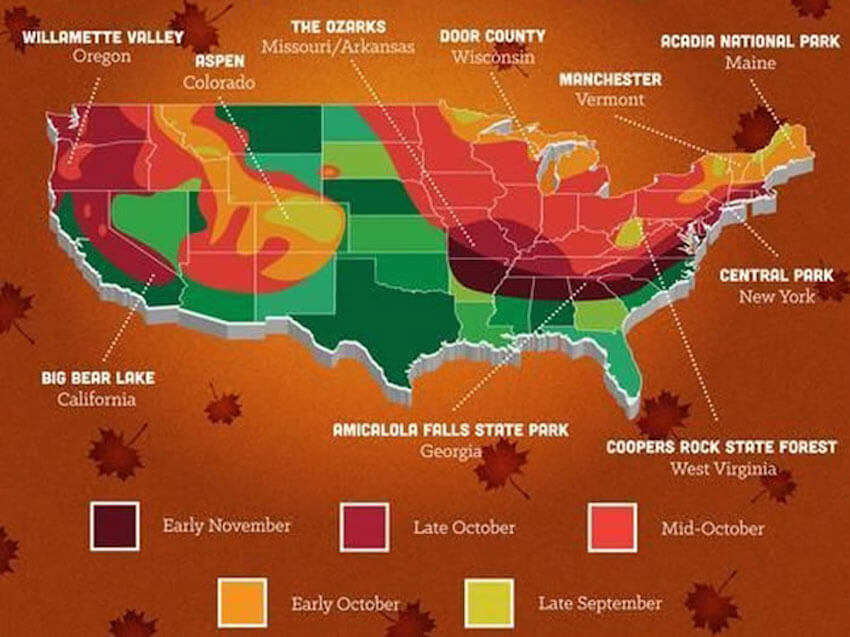 A map of what to expect in Fall