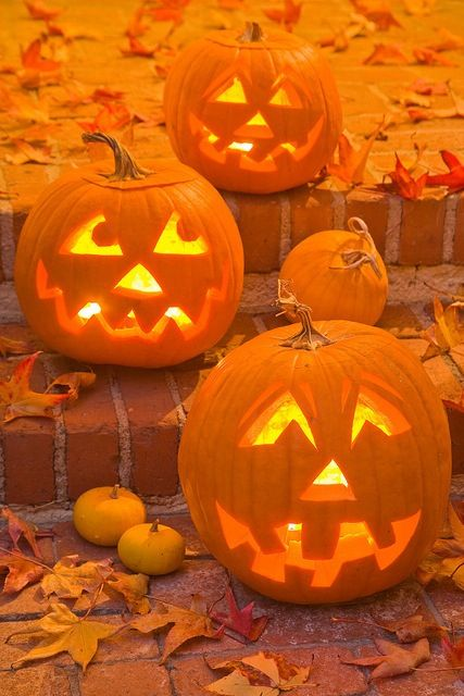 Halloween pointers: To make your jack-o-lantern last as long as possible, there are a few other tips you can try.