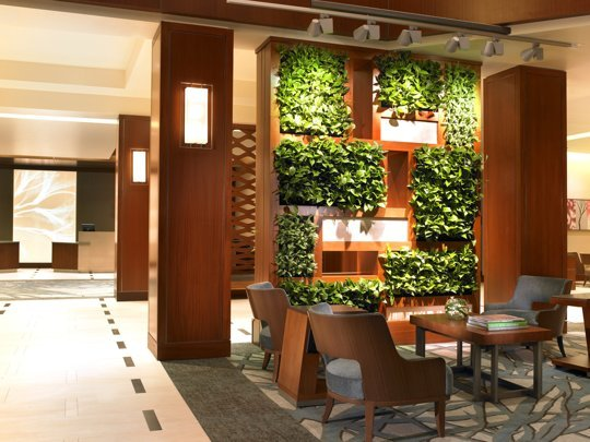 10 Amazing Benefits of Eco-Friendly Living Wall Partitions