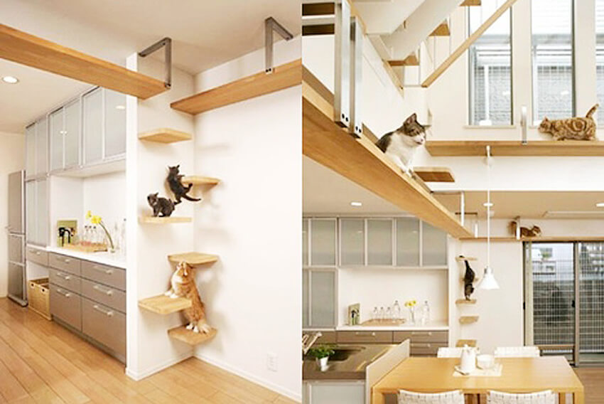 Base boards along interior walls that your cats will love