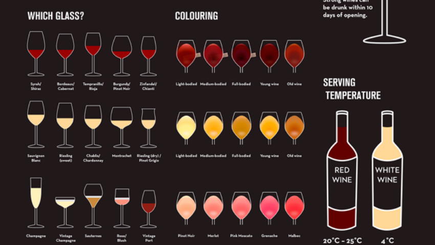 Make sure to pick the right glasses for the wines of choice. Image Source: Life Hacker