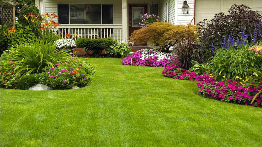 Give your yard a boost with some easy and quick improvements.