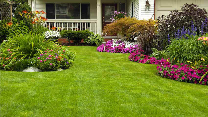 The first step in getting your yard ready for spring is by taking care of the lawn.