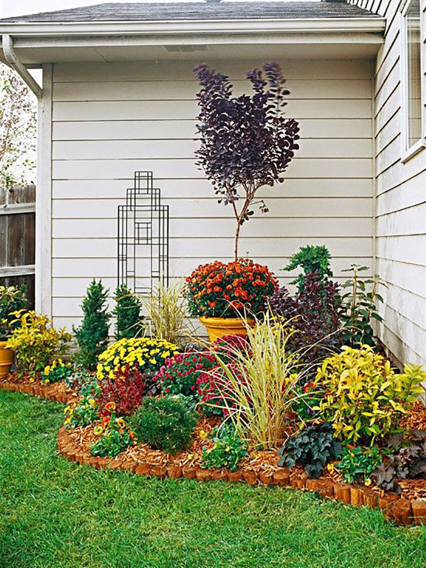 Analyze your yard to see which plants fits best your space.