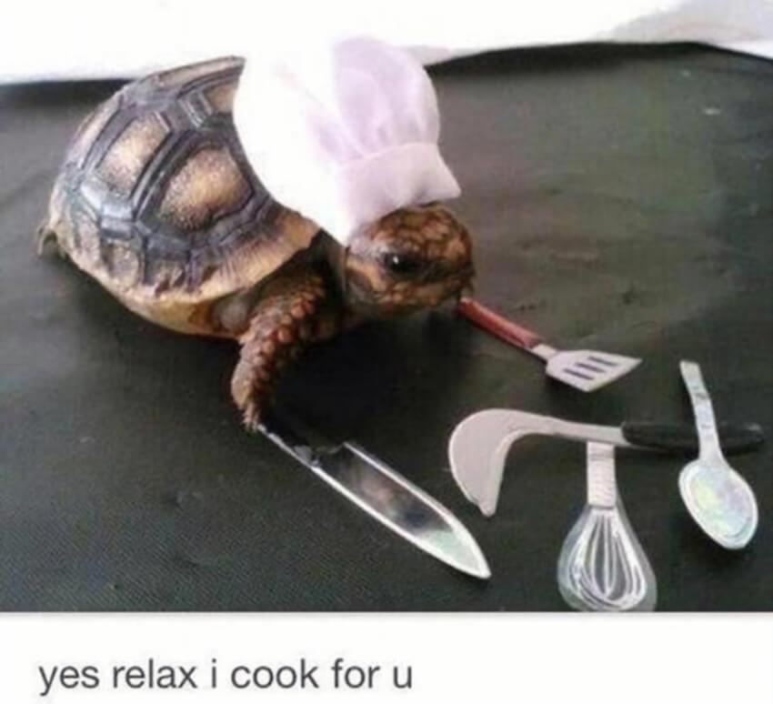 Cooking skills!