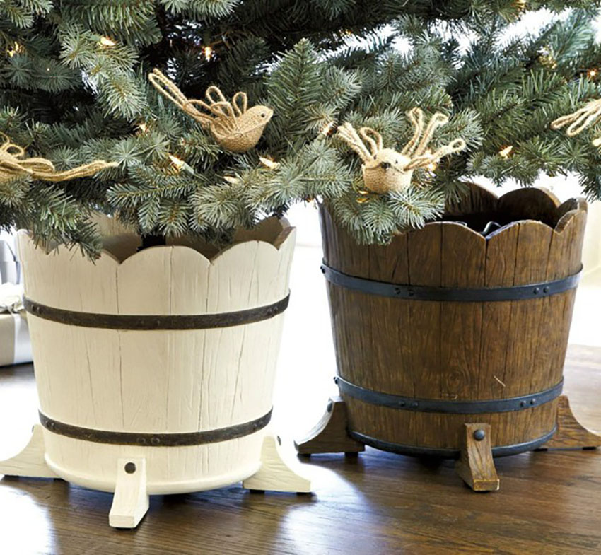 Tree - 6 Tips for Picking the Perfect Christmas Tree