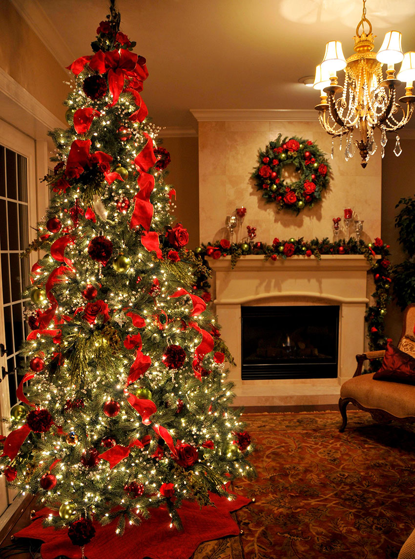 Perfect Christmas Tree Feature Image