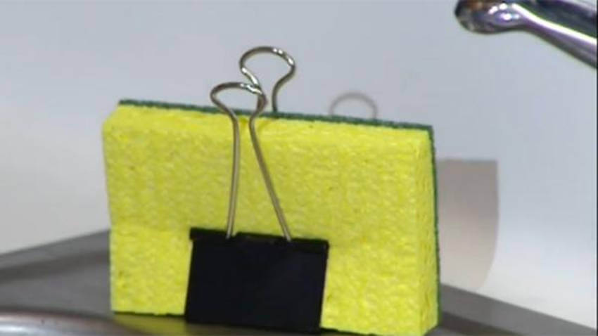 Avoid creating mold on your sponge by using this hack!