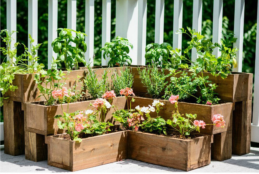 Keep a beautiful garden getting rid of weeds without harming your plants!