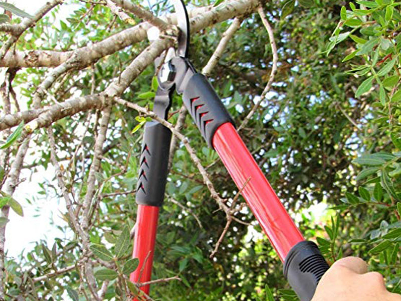 Top 10 Essential Tools for Gardening