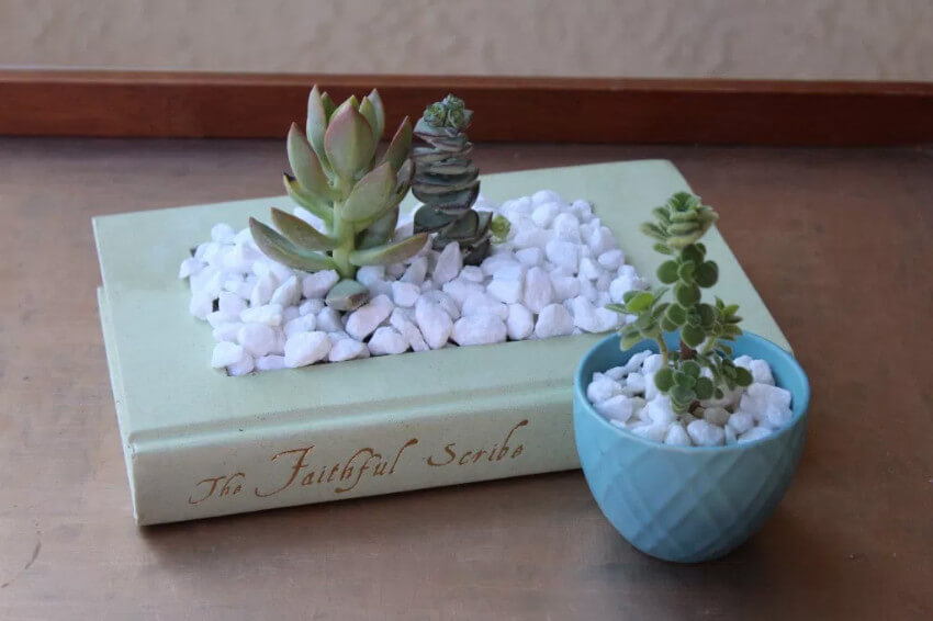 This beautiful planter can transform any room.
