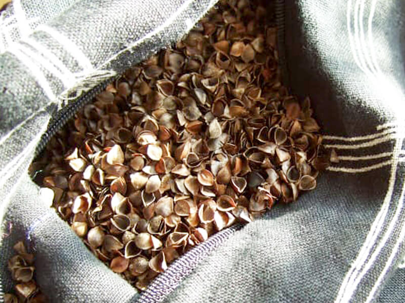 Have You Heard About the Benefits of Buckwheat Pillows?