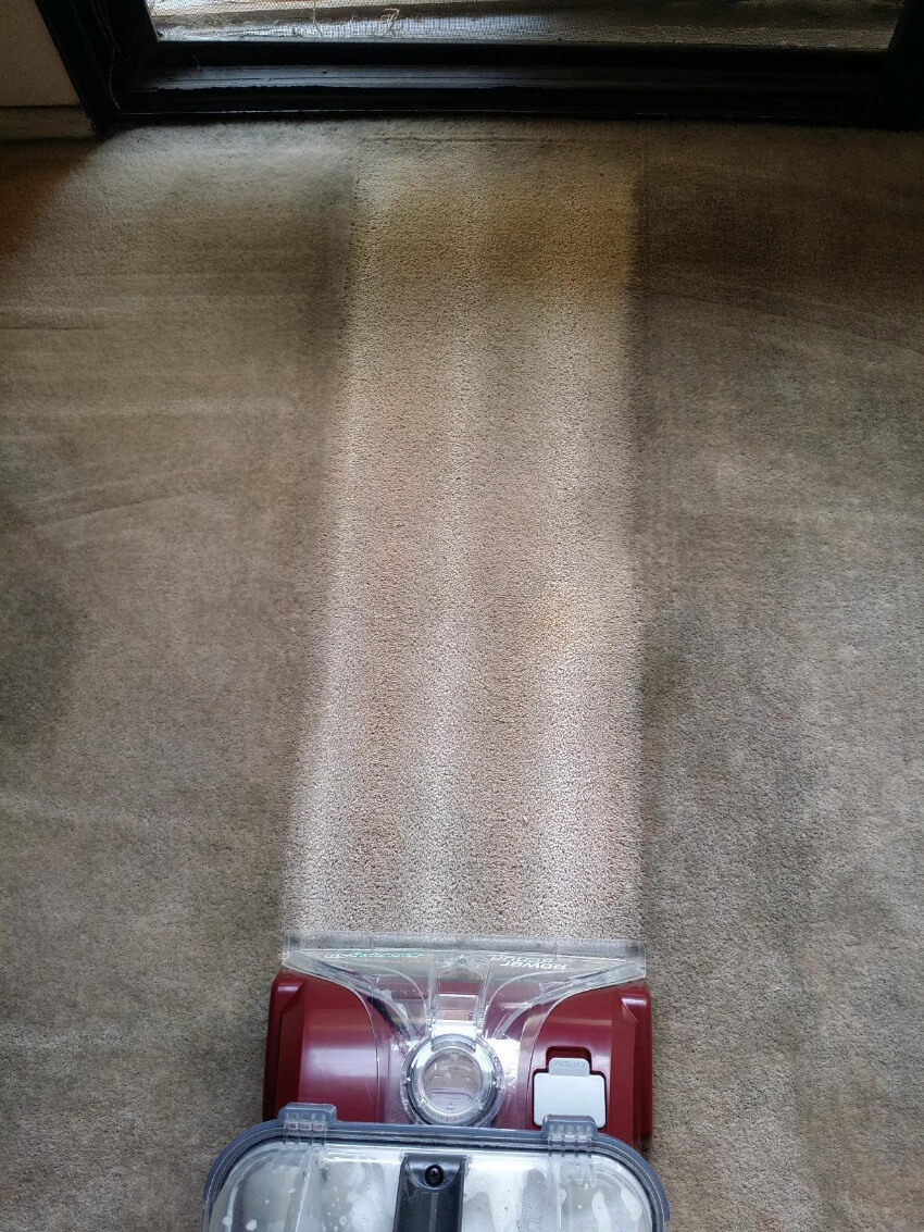 Your neglected carpet will see it's days of glory with this powerful carpet cleaner
